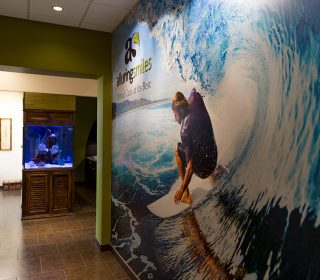 Surfing Man - Wall Design at Alluring Smiles in Mesa, AZ - Dr. Javier Portocarrero